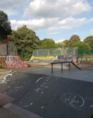 peckham rye skatepark